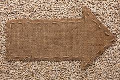 pointer of  burlap lies on sunflower seeds - stock photo