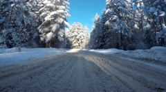 Movement the car in snow wood. In a sunny day on snow road. - stock footage
