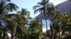 Tropical landscape with palms, Sea And Mountain - stock footage