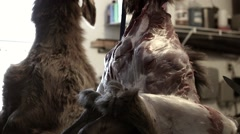 A hunter skinning elk and butchers it for the meat Stock Footage