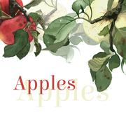 Watercolor apples with leaves. Background - stock illustration