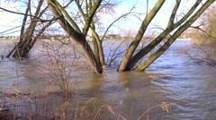 Rhine flooding - stock footage