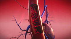 blood vessels - stock footage