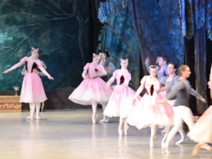Ballet performance. Related clips are in my portfolio in 1920x1080. Stock Footage