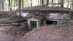 The Abri du Kronprinz German bunkers, near Varennes-en-Argonne, Meuse, France. Stock Footage