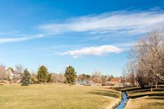 view of suburban park - stock photo