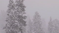 Snowplows clear roads in Yellowstone National park. Stock Footage