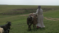 Old Costume Peasants are Herding Stock Footage