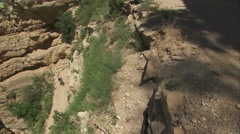High angle view of rangers leading a hiking group in the Grand Canyon. Stock Footage