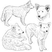 Set shepherd dog sketch. black contour on a white background. vector Stock Illustration