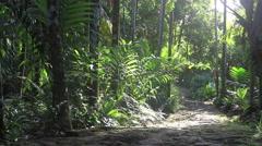 On Micronesian Island of Yap Stock Footage