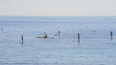 ST TROPEZ PADDLE BOARDERS Stock Footage
