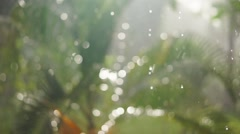 Beautiful sun in garden with rain drops falling out of focus Stock Footage
