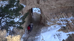 Grand Canyon Bright Angel trail tourists HD 114 Stock Footage