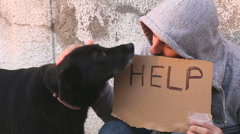 True friendship of man and dog Stock Footage