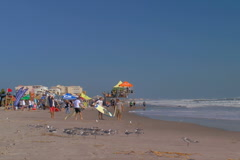 Surfers and surfboards on Cocoa beach Stock Footage