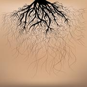 roots of the tree - stock illustration