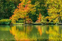beautiful landscape scene in autumn - stock photo