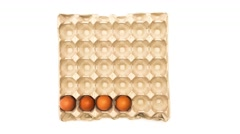 Egg carton filled with eggs Stock Footage
