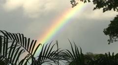 Fiji, Viti Levu, Rainbow MS - stock footage