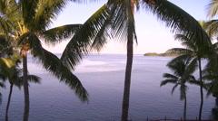 Fiji, Viti Levu, Palm Trees, Sea, Distant Point - stock footage
