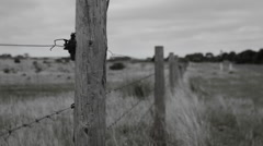Old Wooden Barbwire Fence- Black and White Stock Footage
