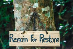 Signs remain for restore on tree Stock Photos