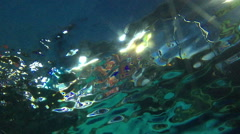 Look through under to water surface with many fishes Stock Footage