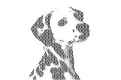 Word dog mixed to be figure of dog, with typography style, isolated on white Stock Illustration