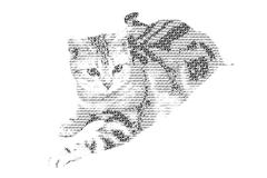 Word cat mixed to be figure of cat, with typography style, isolated on white Stock Illustration