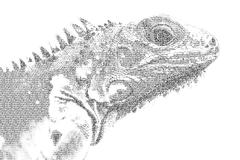 word iguana mixed to be figure of iguana, with typography style, isolated on - stock illustration