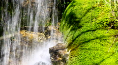 Closeup of Rio Del Verde waterfall with musk  in Abruzzi, Italy, with sunbeam. Stock Footage