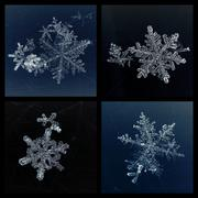 set of four beautiful macro snowflakes details on dark background - stock photo