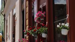 Flowershop Stock Footage