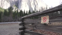Yosemite National Park, give the plants a chance Stock Footage