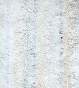 Old clear tile Kuvituskuvat