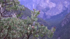 Yosemite National Park Bridalveil Falls ,focus shift Stock Footage