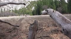 Yosemite National Park,  Royal Arch Stock Footage