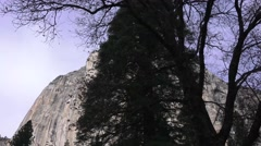 Yosemite National Park, dolly driving Stock Footage