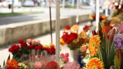 Outdoor Flower Stand Stock Footage