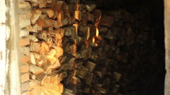 Shadows Play on Logs Stock Footage