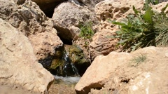 Spring Flows Among Stones Stock Footage