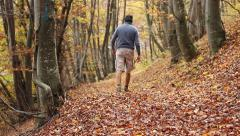 Trekking Through Autumn Forest Stock Footage