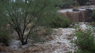 Stock Video Footage of 4K Flooded Muddy Flowing Water Arizona Wash