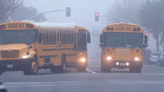 School Buses on a Foggy Day Stock Footage