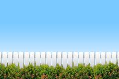 White fence and shrubs on blue sky Stock Photos