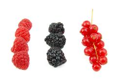 Blackberries, red currants and raspberries arranged in rows on white background - stock photo