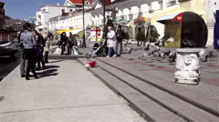 SMALL DOG CHASES PIGEONS BALAKLAVA CRIMEA UKRAINE Stock Footage