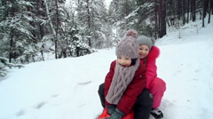 Sleighing Together Stock Footage
