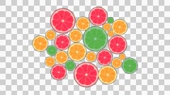 Colorful slices of oranges background animation Stock Footage